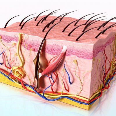 Saç dökülmesi medikal tedaviler
